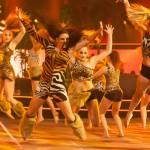 Han Balk Agios Acro Holland's Got Talent