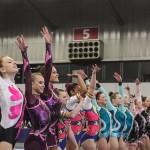 Fantastic Gymnastics 2015 Acrogym A Middag